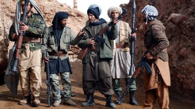 ВАфганистане создается шиитский фронт против талибов
