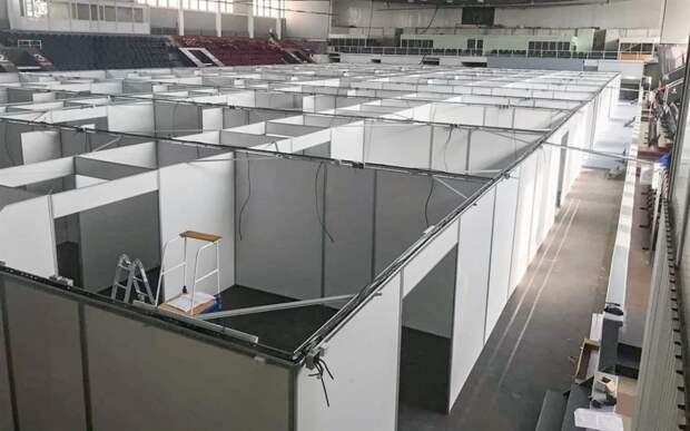 Респираторный госпиталь во Дворце спорта будет готов к лету