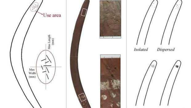 Ученые обнаружили неожиданную функцию бумерангов в древности