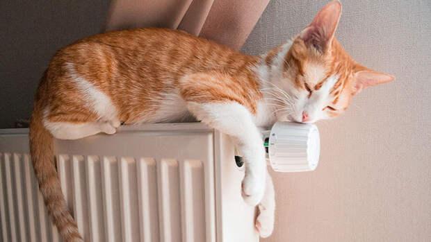 Вильфанд рассказал, что погода в столице позволяет отключить отопление