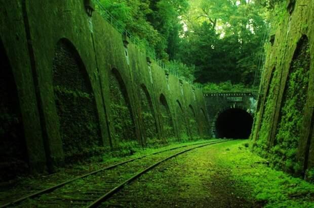Заброшенный железнодорожный тоннель во Франции. жизнь, интересные, фото
