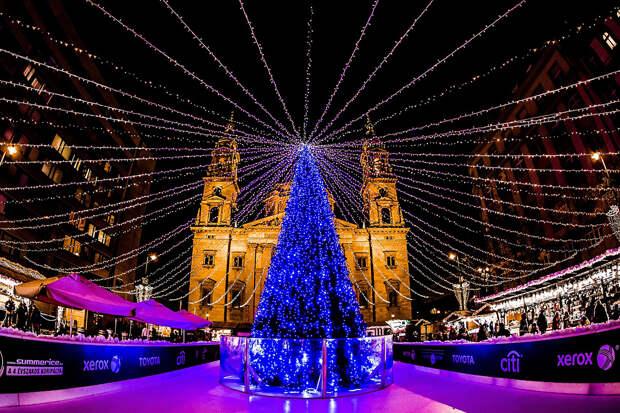 Будапешт украсят экологичными новогодними украшениями