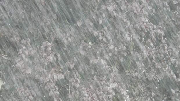 Штормовое предупреждение объявили в Ленинградской области 18 мая