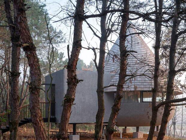 Гостевой дом-гриб в Китае
