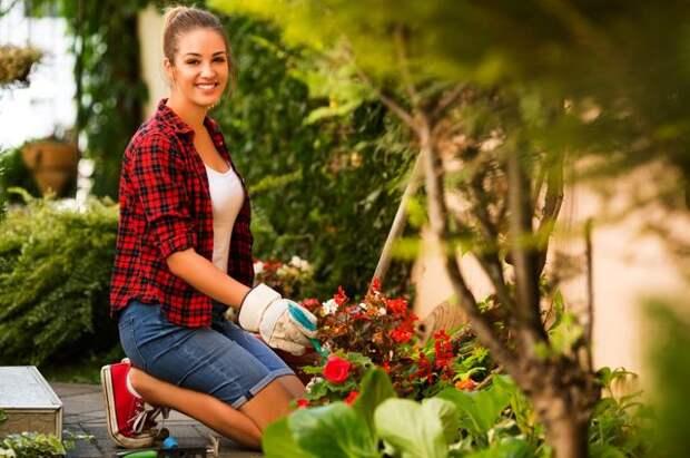 Правда ли, что у некоторых садоводов бывает «лёгкая рука»?
