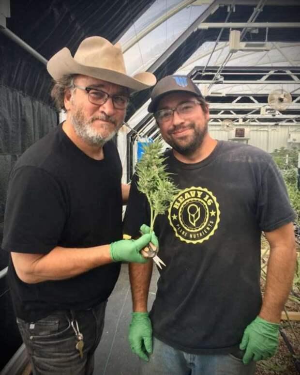 Актер Джеймс Белуши нашел себе занятие на пенсии и выращивает марихуану в промышленных масштабах