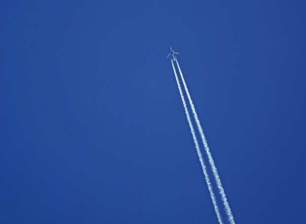 Наука: ужас летящий