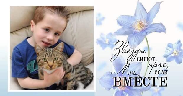 Их было трое, он был один… но с котом! Самый храбрый питомец защитил своего 5-летнего хозяина от нападавших!