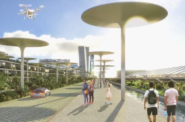 Новый смарт-город в Канкуне с 7 миллионами растений