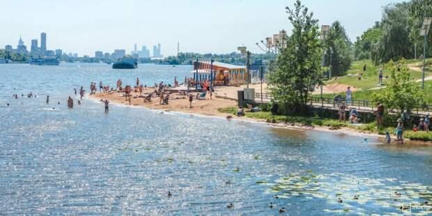 Роспотребнадзор проверил две зоны пляжного отдыха в Строгине
