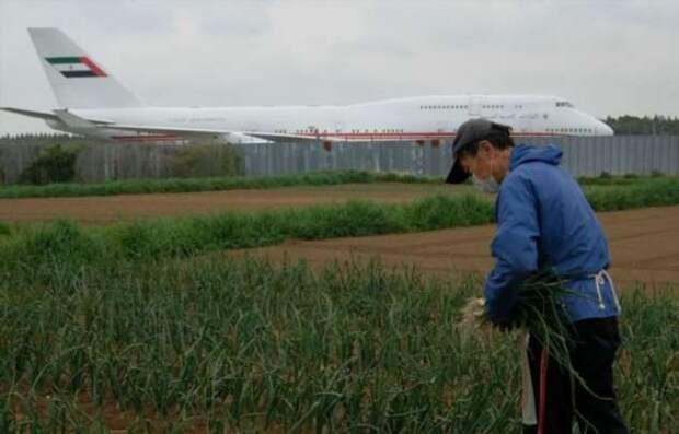 Фермер живет в центре крупнейшего аэропорта Японии