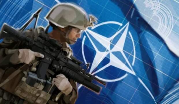 «Десятки тысяч солдат»: Дандыкин объяснил, почему НАТО обеспокоена ограничением навигации в Черном море