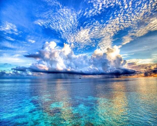 Красота нашей природы
