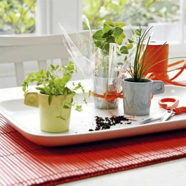 herb-garden-inspirations1-500x500 (500x500, 209Kb)