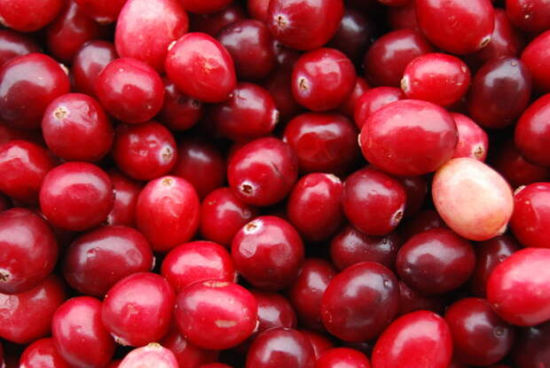 10 продуктов, которые помогут сохранить здоровье сосудов