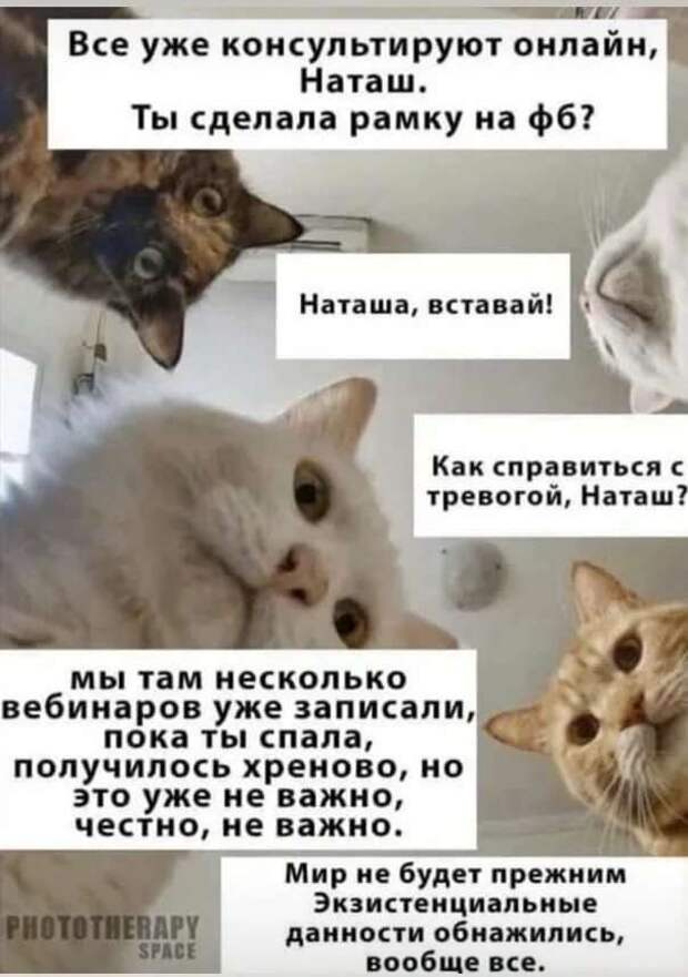 Смешные комментарии. Подборка chert-poberi-kom-chert-poberi-kom-57570217102020-6 картинка chert-poberi-kom-57570217102020-6