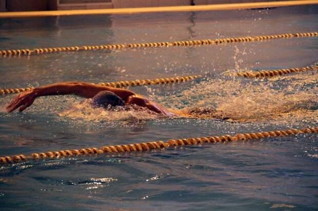 Соревнования по плаванию / фото: Центр физкультуры и спорта СЗАО