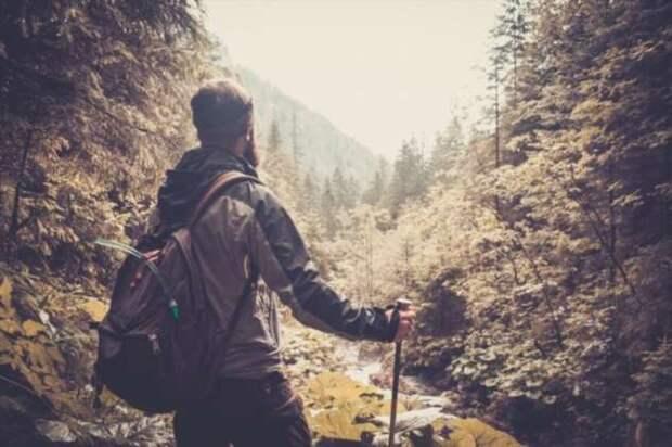 Почему мы действуем вопреки здравому смыслу