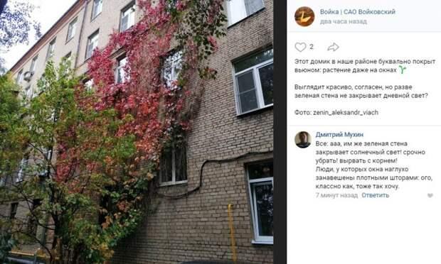 Фото дня: «зеленый» дом в Войковском
