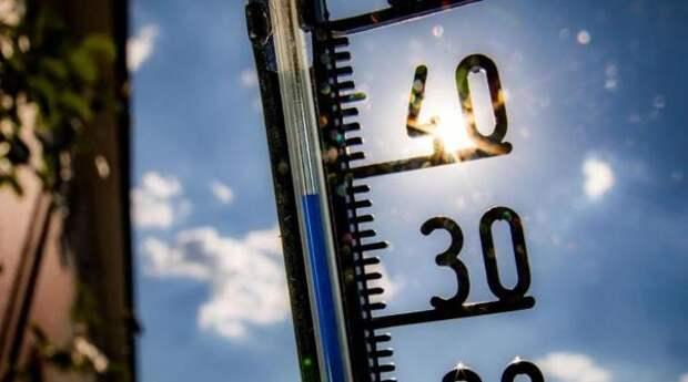 На юге России установится 40-градусная жара