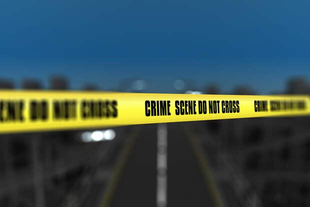 Двое детей и трое взрослых погибли при стрельбе в Южной Каролине