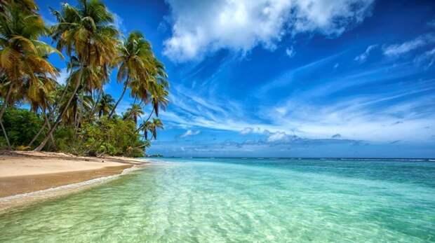 Остров Тобаго Земли, интересное, история, колонии, политика, россия, страны, упущенные
