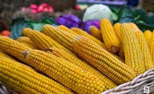 В Казани начинают работу ярмарки с оптовыми ценами на овощи