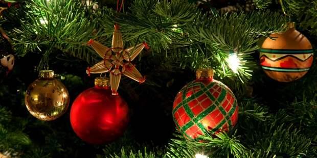 Власти оценили идею продлить новогодние праздники на 2 недели