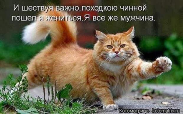 224335047caaf349ed5f73566d3_prev