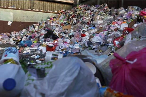 В России предложили альтернативы пластику