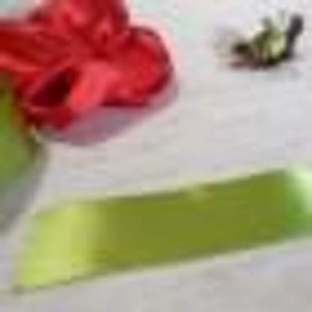 Вышиваем пышные маки из атласных лент