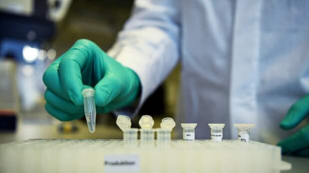 В Смоленской области провели 386 675 тестов на COVID-19