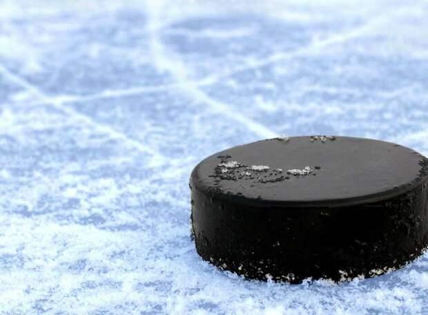 Пять очков из шести возможных. Молодежь «красно-синих» бросает перчатку основе? Хоккей. КХЛ