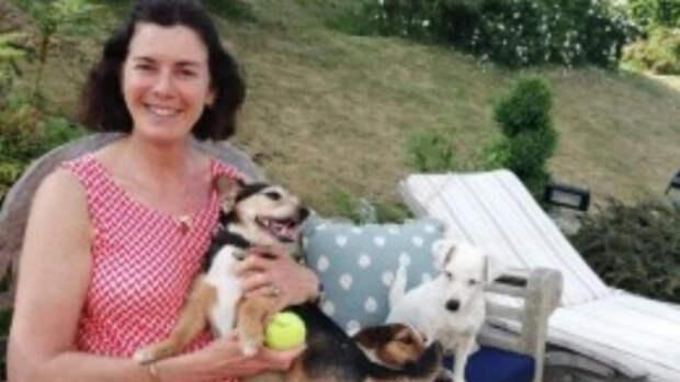 Возвращение домой: семья отыскала собаку, потерянную 11 лет назад