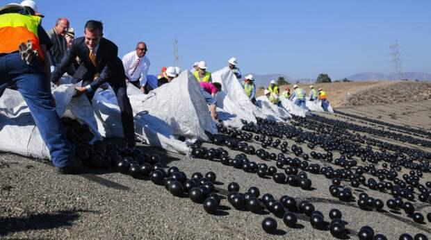 Миллионы шариков.  Фото: twitter.com.