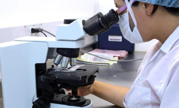Ученые опровергли связь веса человека и здоровья сердца