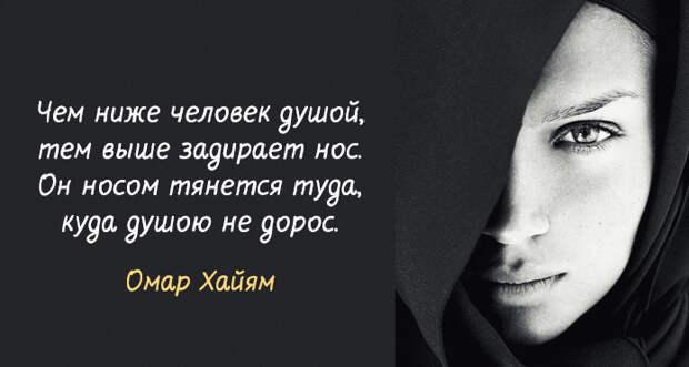 15 лучших афоризмов Омара Хайяма – мудрость через века!