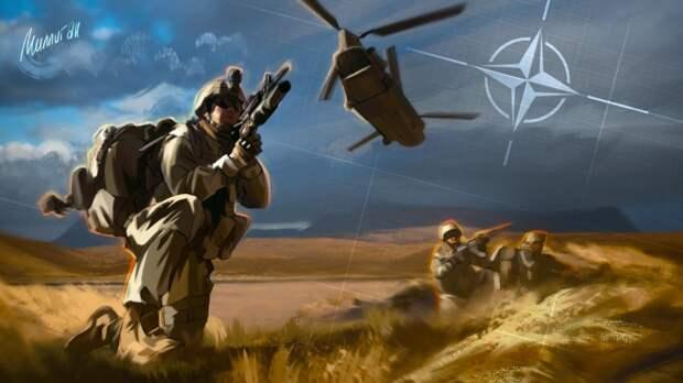 Таллин запланировал нарастить войска в рамках участия в НАТО