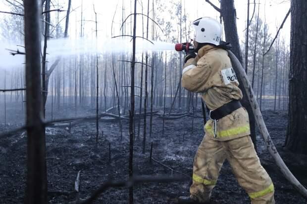 В Каракулинском районе ликвидировали пожар площадью более 100 гектаров