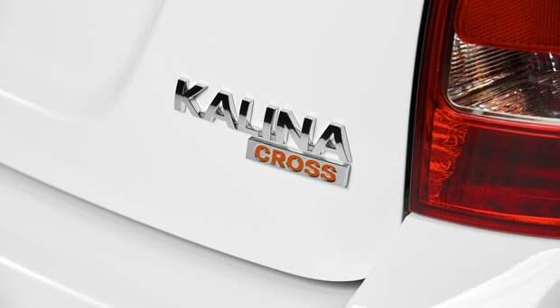 Такие разные близнецы: чем различаются Калина Кросс и «просто» Калина