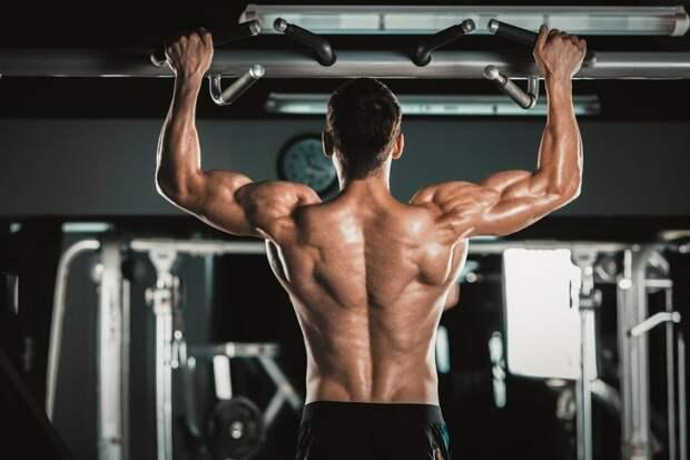 Как накачать трапецию: 9 эффективных упражнений