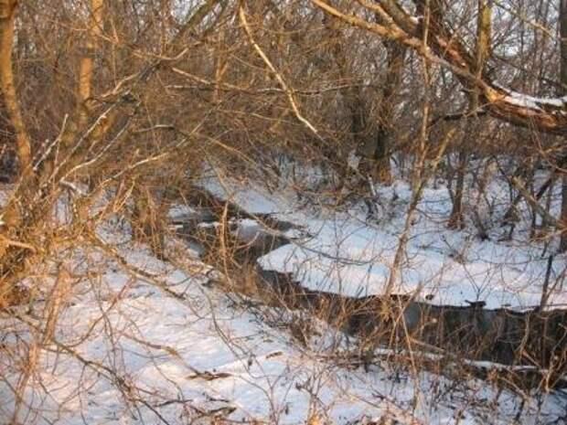 Зимой речушка замерзает только в суровые холода