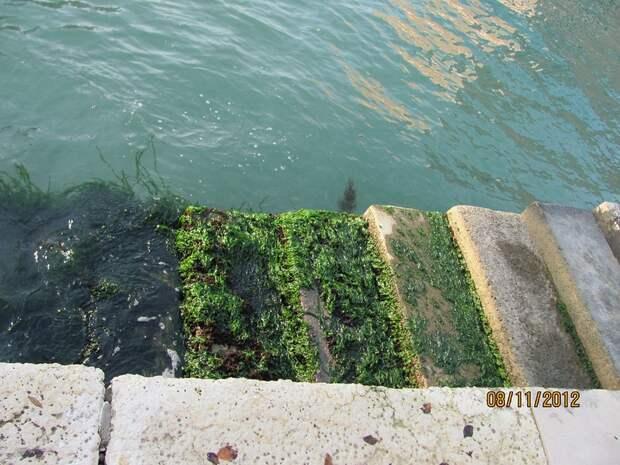 """Венецианский Арсенал. Русские могилы на """"острове мертвых"""" в Венеции. Венеция: детали (3 статьи)"""
