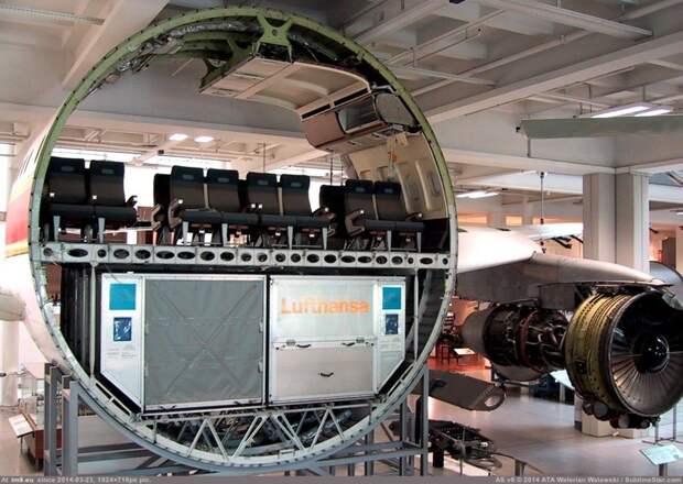 Отсек коммерческого авиалайнера в разрезе интераесное, факты, фото