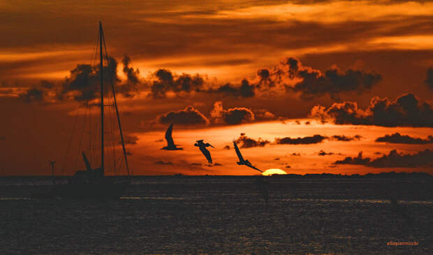 Sunset Of Satin And Velvet by Elio Giannicchi on 500px.com