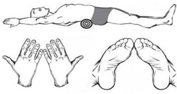 Худейте лежа! Вот уникальная японская методика для ленивых