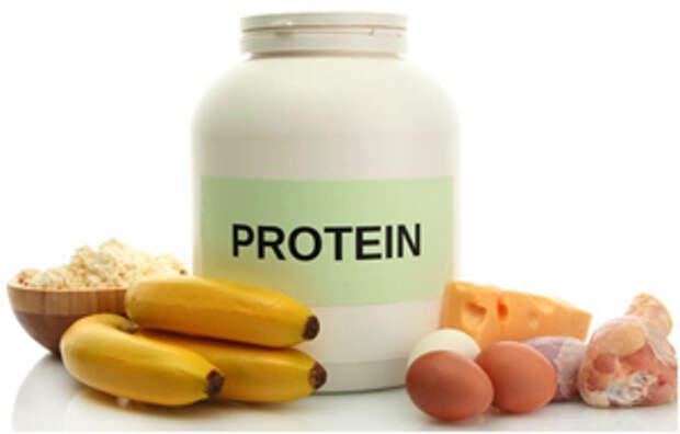 суточная норма белка