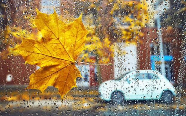 11 факторов, о которых водителю надо помнить осенью