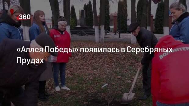Волонтеры и члены местного отделения партии «Единая Россия» высадили «Аллею Победы» в Серебряных Прудах