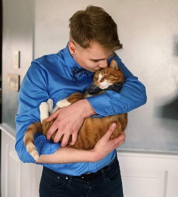 18 фото, которые стремительно приблизят вас к решению завести кота. Еще одного